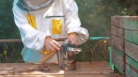 Producent dymny fajczany pipczyka palacza przyrządu styl życia dla odpędzać złe pszczoły Zwolnionego tempa wideo pasieka beekeepi zbiory