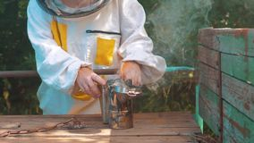 Producent dymny fajczany pipczyka palacza stylu życia przyrząd dla odpędzać złe pszczoły Zwolnionego tempa wideo pasieka beekeepi zdjęcie wideo