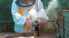 Producent dymny styl życia drymby pipczyka palacza przyrząd dla odpędzać złe pszczoły Zwolnionego tempa wideo pasieka beekeeping zbiory wideo