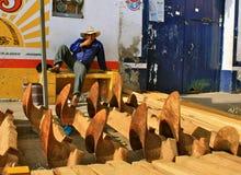 producenta targowy Mexico pługu tlacolula Fotografia Royalty Free