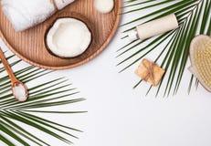 Producs do cuidado do corpo, coco e folhas do verde imagem de stock royalty free