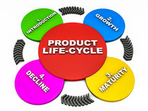 Product life cycle. Life cycle of a product in four stages, introduction, growth, maturity, decline on white background Stock Photos