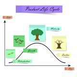 Product Life Cycle As Sticky Notes on White Background royalty free illustration