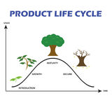 Product Life Cycle on White Background Stock Photos