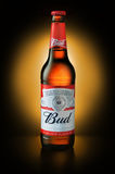 Product shot of Budweiser beer bottle Royalty Free Stock Image