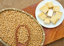 Product from soybean. Soybean name Glycine max, Fabaceae family, rich protein, acid amin, vitamin, an orgaric, cheap, nutrition product, to process soymilk, soy Royalty Free Stock Photos