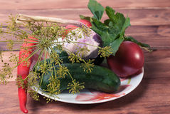 Producten voor huis het inblikken op de plaat Komkommers, tomaten, peper, knoflook Royalty-vrije Stock Fotografie