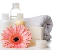 Producten voor kuuroord, lichaamsverzorging en hygiëne Royalty-vrije Stock Afbeeldingen