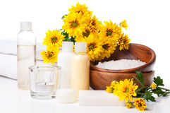Producten voor kuuroord, lichaamsverzorging en hygiëne Royalty-vrije Stock Fotografie