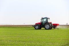 Producteur dans le domaine de blé de fertilisation de tracteur au ressort avec le npk photographie stock