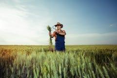 Producteur vérifiant la qualité du blé avec la loupe images stock