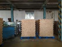 Productie van blikken in de fabriek Stock Afbeeldingen
