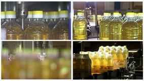 Productie van het geraffineerde multischerm van de zonnebloemolie stock video
