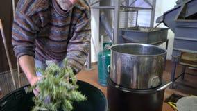 Productie van parfumessentie door stoomdistillatie in distillatiekubus in een klein Alpien dorp stock footage