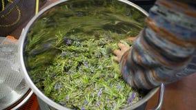 Productie van parfumessentie door stoomdistillatie in distillatiekubus in een klein Alpien dorp stock video