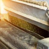 Productie van raapzaadolie, het malen van koolzaad op productiemateriaal, de industrie, raapzaadverwerking, koolzaadmalen stock afbeelding
