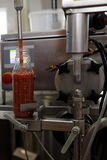 Production of ajika sauce in a food processing plant. St. Petersburg, Russia - February 28, 2017: Production of ajika sauce in a food processing plant. The royalty free stock images