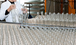 Production of alcohol drinks. An operator puts empty bottles on conveyor Royalty Free Stock Photo