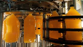 Production and bottling juice in plastic bottles on automatic conveyor line.