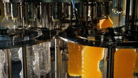 Production and bottling of juices, beverages in clean sterile plastic bottles.