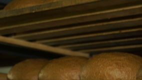 Production of bread. Freshly baked bread on trays stock video footage