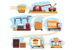 Production of bread from wheat harvest to to freshly baked bread in shop set of cartoon vector Illustrations vector illustration