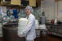 Production of cheese in dairy, worker with forms Royalty Free Stock Photography