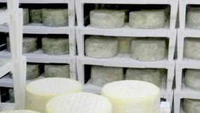 Production of cheese stock video footage