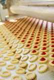 Production cookie in factory Royalty Free Stock Photography