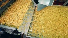 Production de pommes chips Le transporteur d'usine replace des pommes chips banque de vidéos
