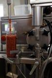 Production de sauce à ajika dans une usine de traitement des denrées alimentaires des produits alimentaires images libres de droits