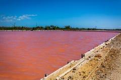 Production de sel rouge dans le lac puerto Rico images libres de droits
