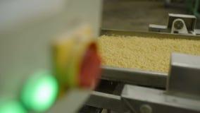 Production des pâtes banque de vidéos