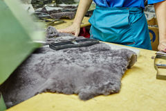 Production of footwear. Worker uses curve on pelt Royalty Free Stock Images