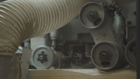 Production of laminated veneer lumber: mechanized production. stock video footage