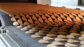 Production line of baking cookies.
