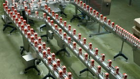 Production line, packing food stock video