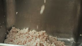 Production of minced chicken. Hd stock video
