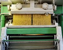 Production of pasta or noodles. Plant and food production paste. vermicelli closeup stock photo