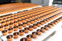 Production of pralines in a factory for the food industry - auto royalty free stock photo