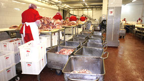 Production of sausages. Sausage Factory. Stock Image