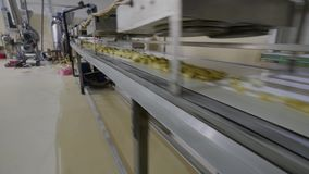 Production sweet corn snacks in factory stock video footage
