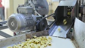 Production sweet corn snacks in factory stock footage