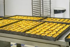 Production of traditional Portuguese eggs pastry called pastel d. E nata, Lisbon, Portugal Royalty Free Stock Images