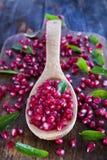 Producto de Autumn Season Pomegranate Fotografía de archivo