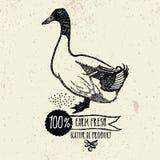 Producto de Duck Farm Fresh Natural Fotografía de archivo