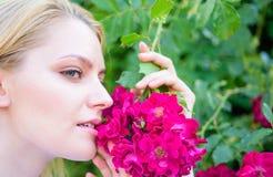 Producto del aroma del aceite del extracto de Rose Muchacha y flores en fondo de la naturaleza Flor hermoso La aspiración de la m imágenes de archivo libres de regalías