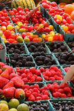 Producto del mercado fresco Fotos de archivo
