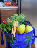 Producto fresco en un bolso de tienda de comestibles Imagen de archivo