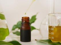 Producto natural del skincare de la belleza para calificar con el orgánico en Imagen de archivo libre de regalías